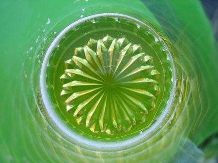piensa-en-verde-1-lisboa-30-de-julio-a-3-de-agosto-07-306.jpg